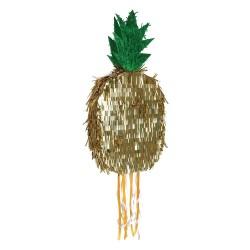 Pignatta ananas
