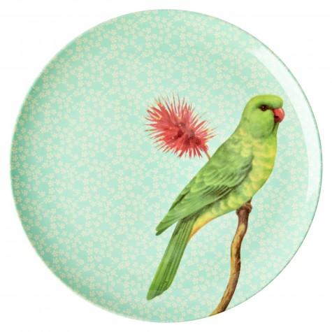 Piatto piano verde fantasia uccellino