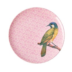 Piatto frutta rosa fantasia uccellino