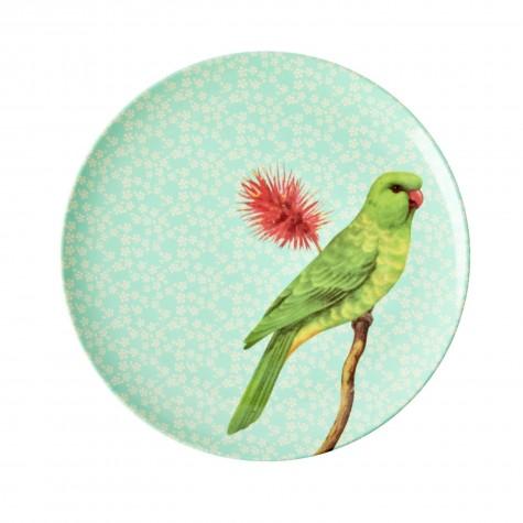 Piatto frutta verde fantasia uccellino