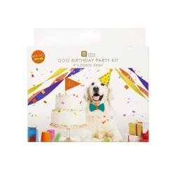 Party box per il tuo cane