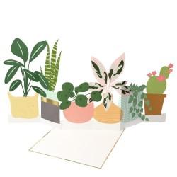 Biglietto di auguri a concertina fantasia piante
