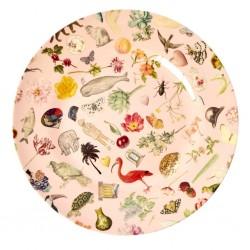 Piatto piano rosa fantasia Art Print